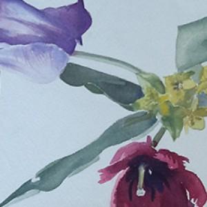 Enkele voorjaarsbloemen (primula's en tulpen)