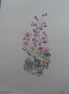 Bloemstudie Alpenbloemen
