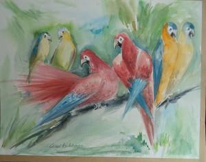 6 papegaaien