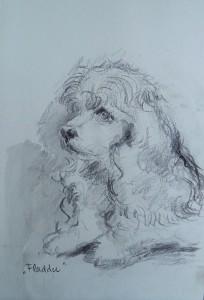 Fladder (Hondje)