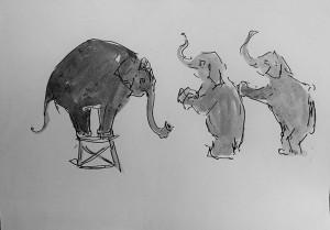 Circus olifanten
