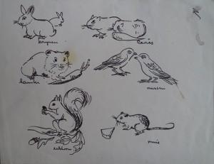 Dieren (konijnen, hamster, eekhoorn, cavia's, mussen, muis)