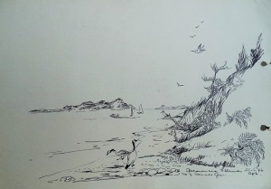 Brownsea Island met Canadese ganzen