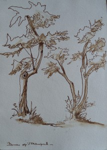 Bomen op 't Manpad