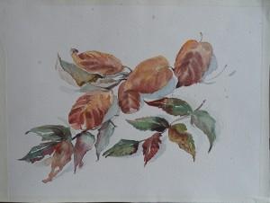 Stilleven met herfstbladeren
